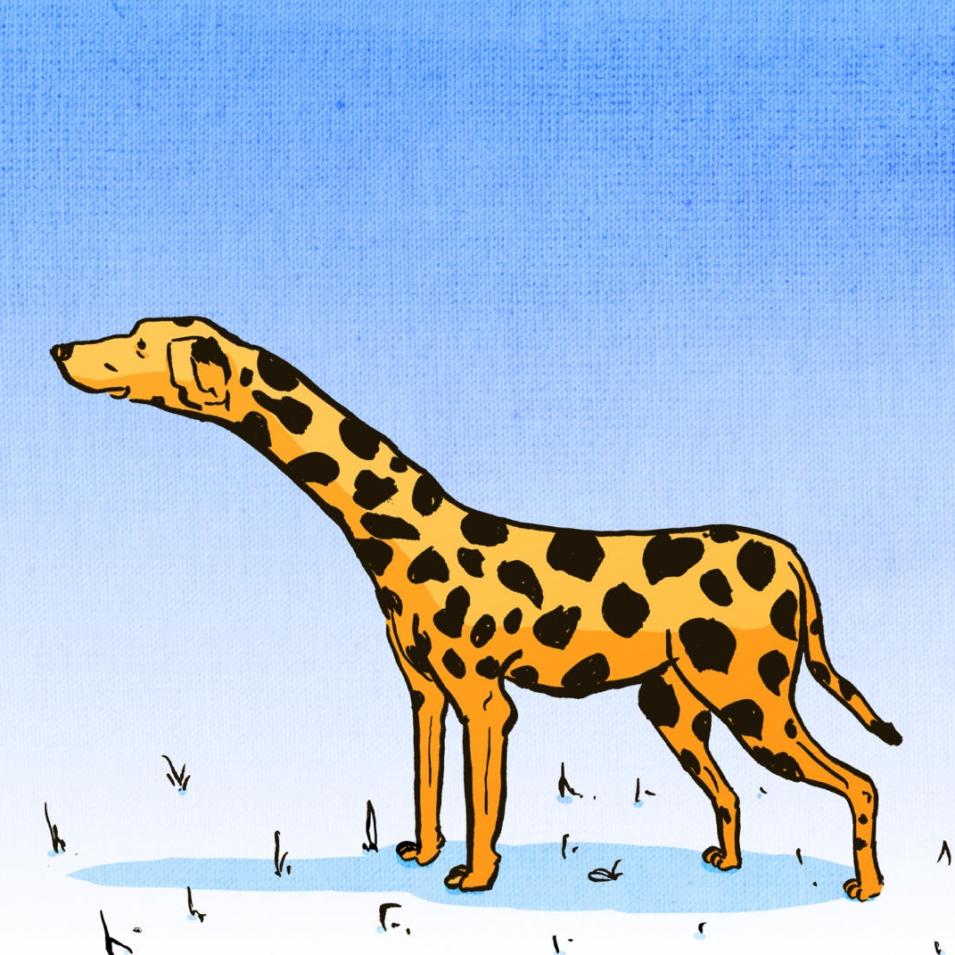 Hunde Illustration